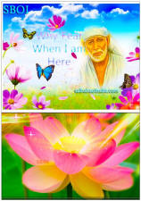 shirdi-sai-baba-mobile-phone-wallpaper-why-fear-when-i-am-here-lotus-flower