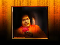 bhagawan-sri-sathya-sai-baba-holding-a-rose-flower-wallpaper