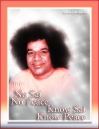 no Sai no peace - know Sai know peace