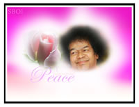 sri-sathya-baba-rose-peace-photo-wallpaper